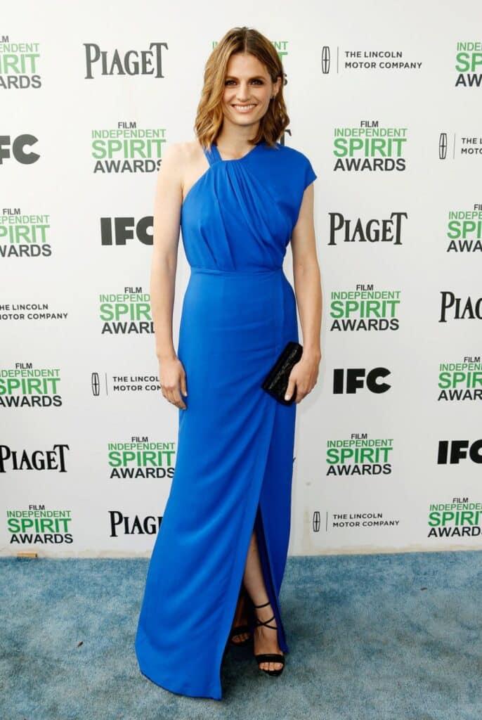 Stana Katic dans une robe bleue ultra échancrée aux Film independent spirit awards 2014