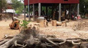 Voyages au Cambodge